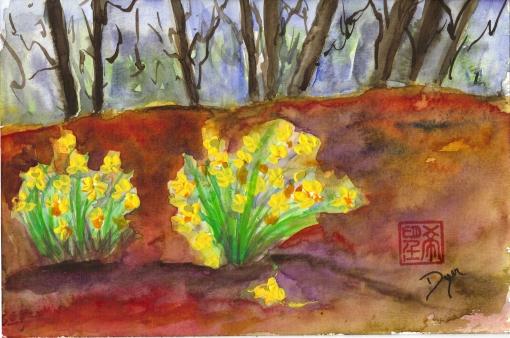 February daffodils