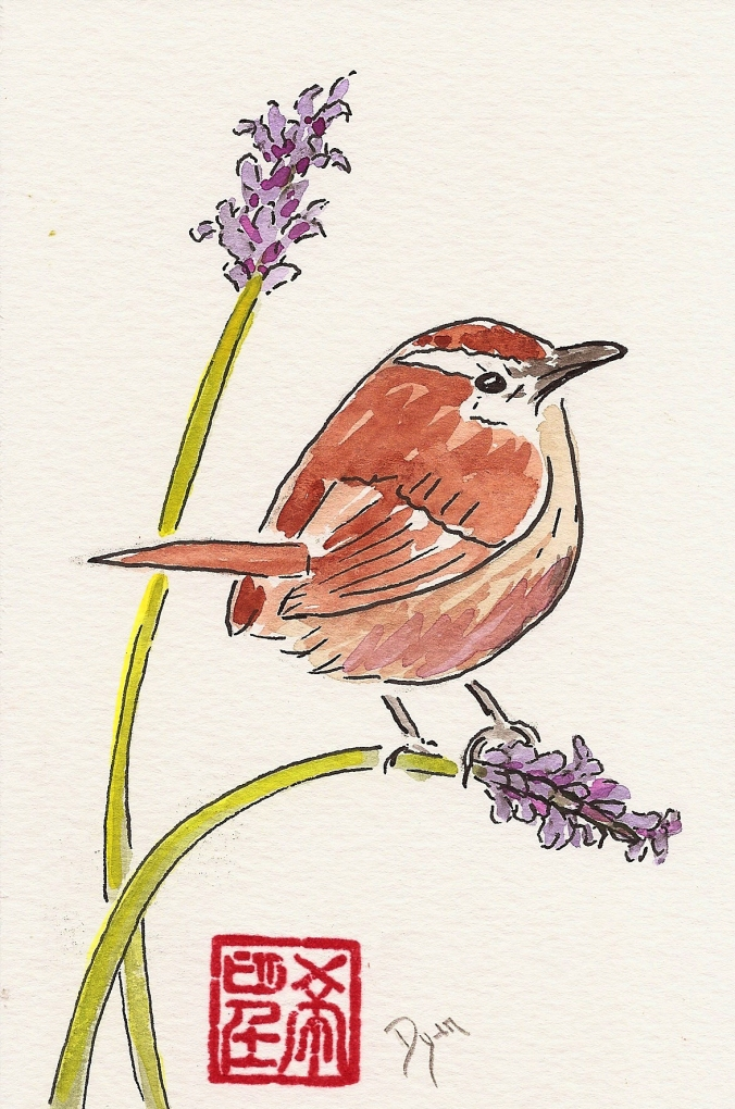 lavender and wren