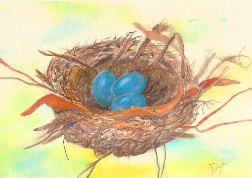 robin nest 1
