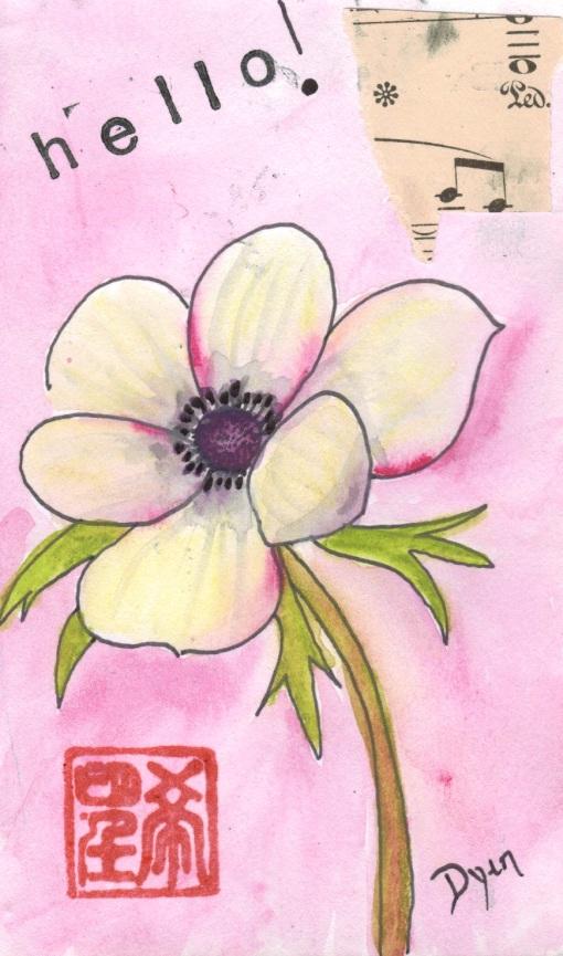 First anemone