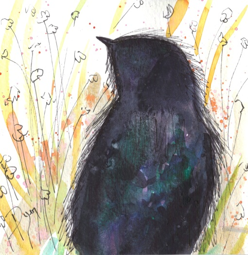 crow meadow