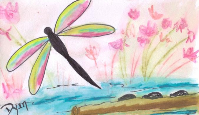 dragonfly 3 x 5