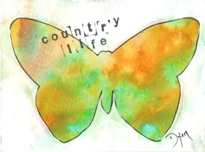 butterfly country life