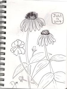 sketchbook july 12