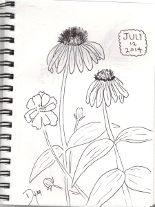sketchbook july 12