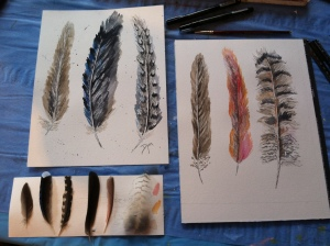 feathers feathers