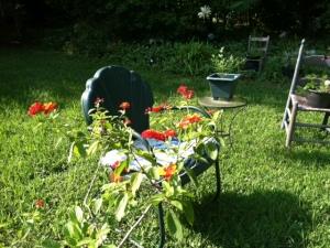 Hal's Garden