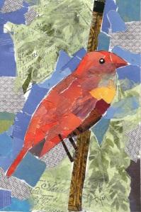 Orange Bird collage