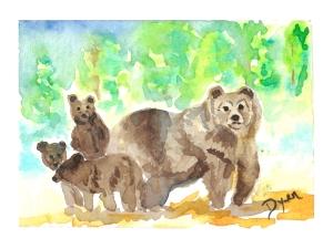 Bear ATC