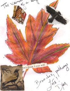 Leaf veins.jpg