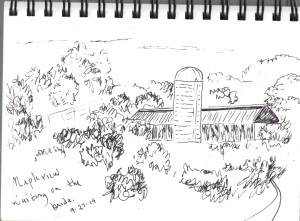 Mapleview sketch.jpg