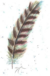 Feathers class