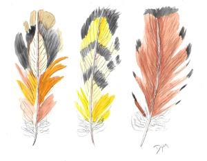 Feathers Earthtone II copy