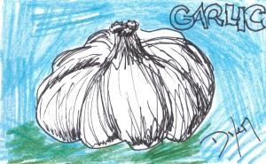 Index card garlic