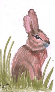 Index card bunny