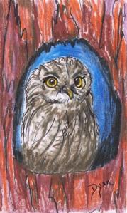 ICAD 5 Owl
