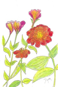 Art Prescription Deck Zinnia color