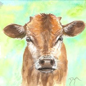 Little Bull 72