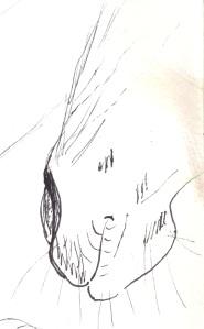 Sketch Carson
