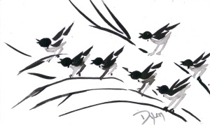 Index card Nov birds