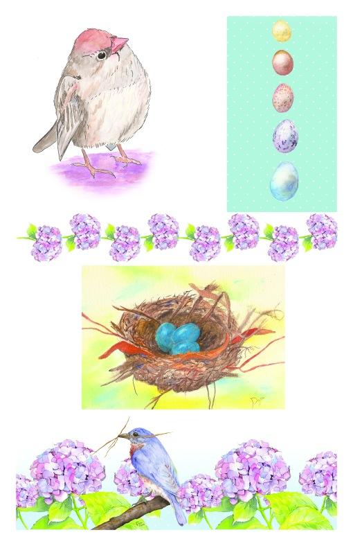 Bird_Collection-2