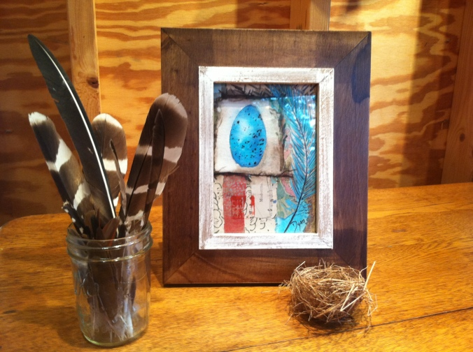 Blue bird egg stage