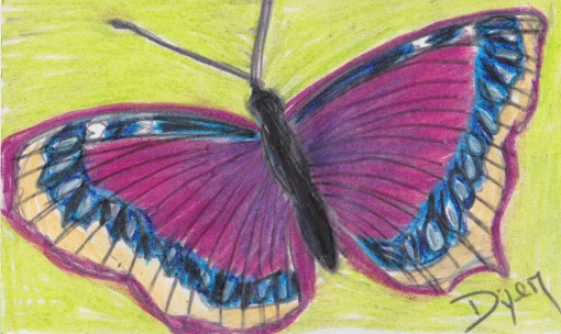Index card Mourning Cloak