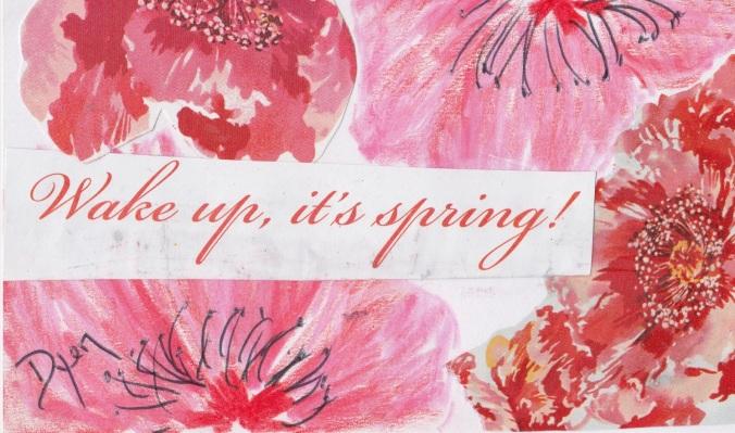 Index card spring 1