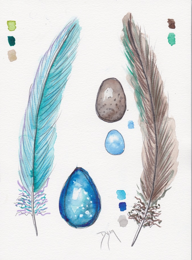 Feathers August 2016