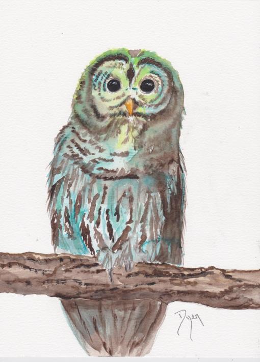 Owl greens