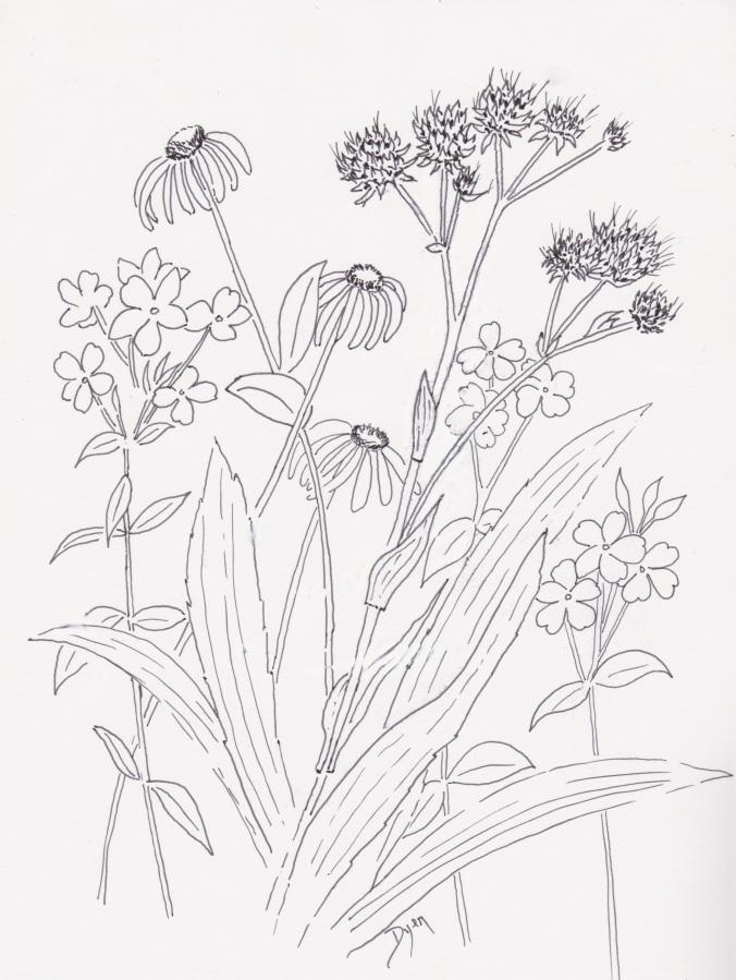 Wildflower of year 2016