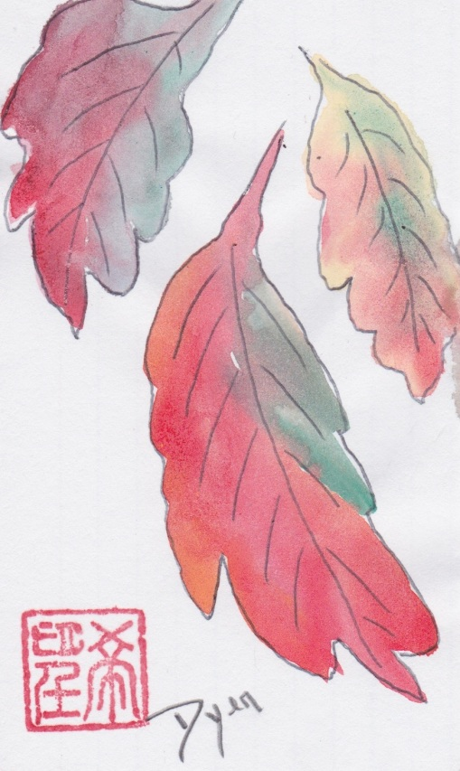 index-card-fall-16
