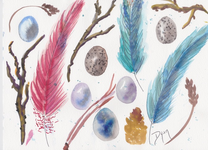 feathers-collection