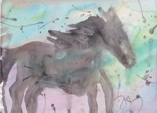 horse-oct