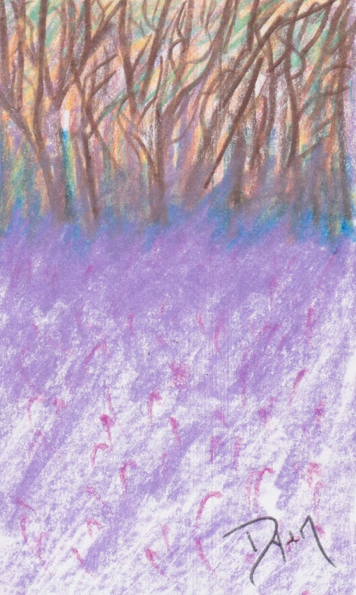Index card purple nettle.jpeg