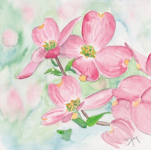 Pink Dogwood 72.jpg