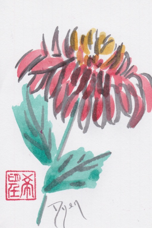 index card chrysanthemum.jpeg