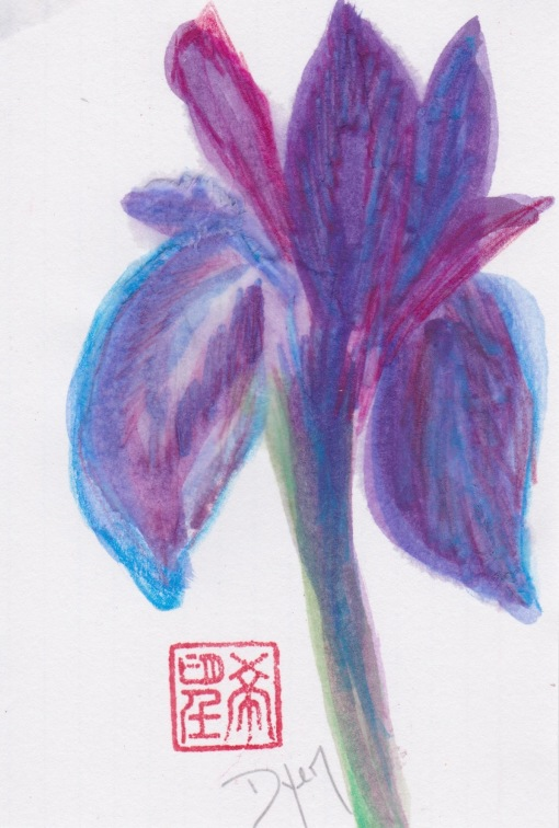 Index card iris 1.jpeg