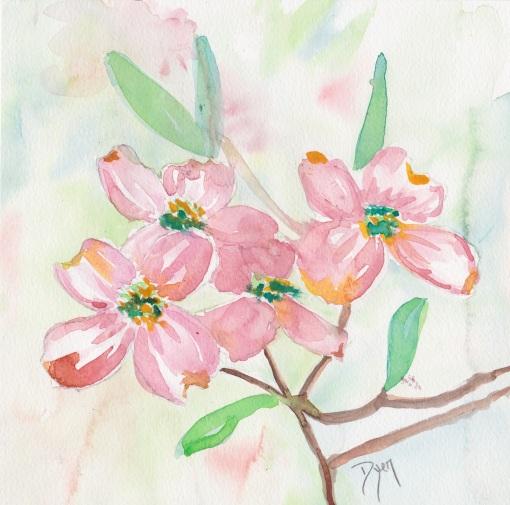 Pink Dogwood 1.jpeg