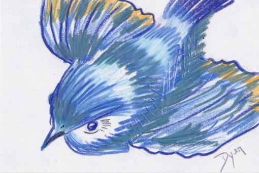 Index card blue bird flight.jpeg