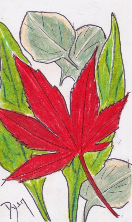 Index card 2017 14 leaves.jpeg