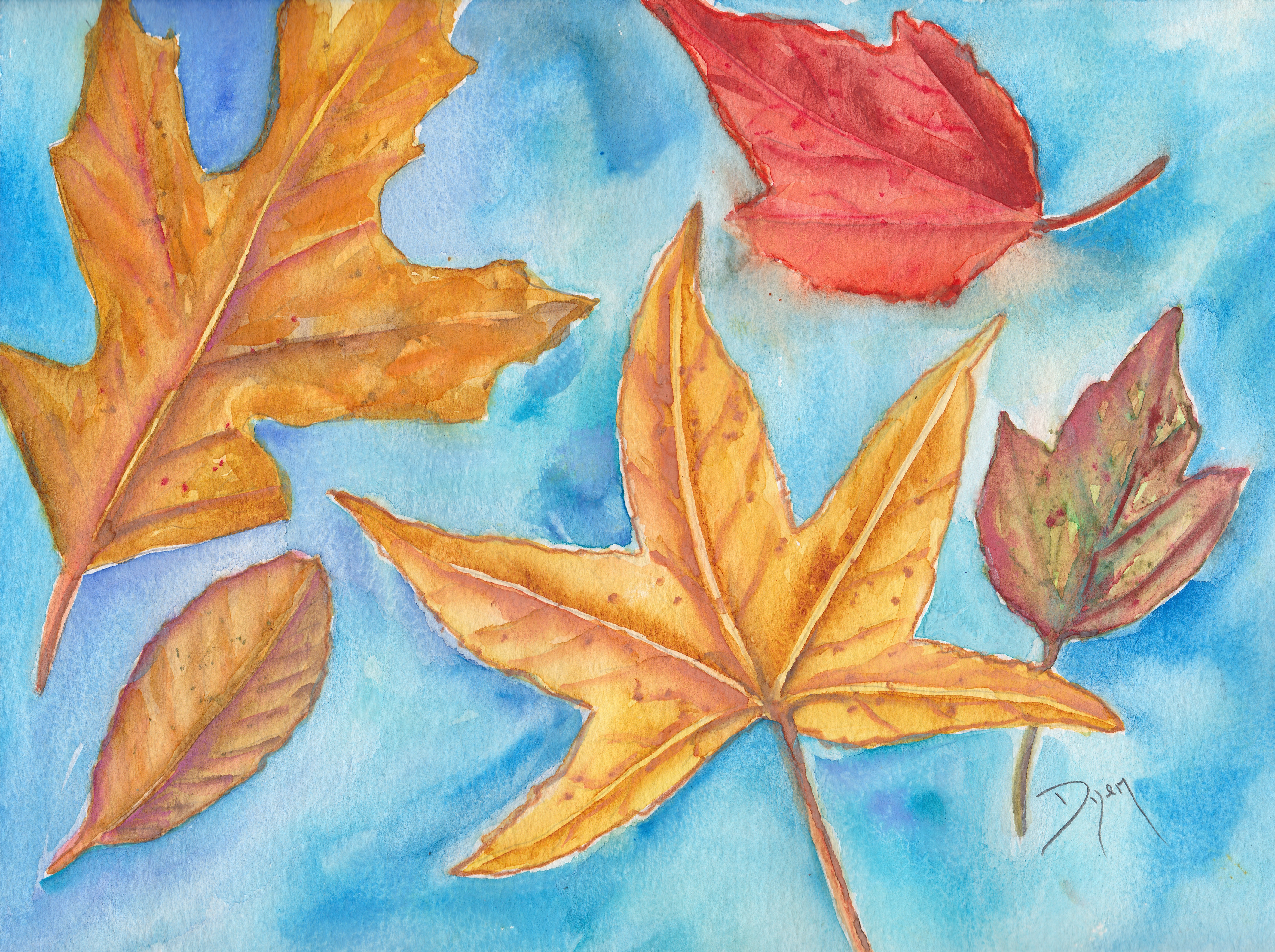 trees fall leaves.jpg