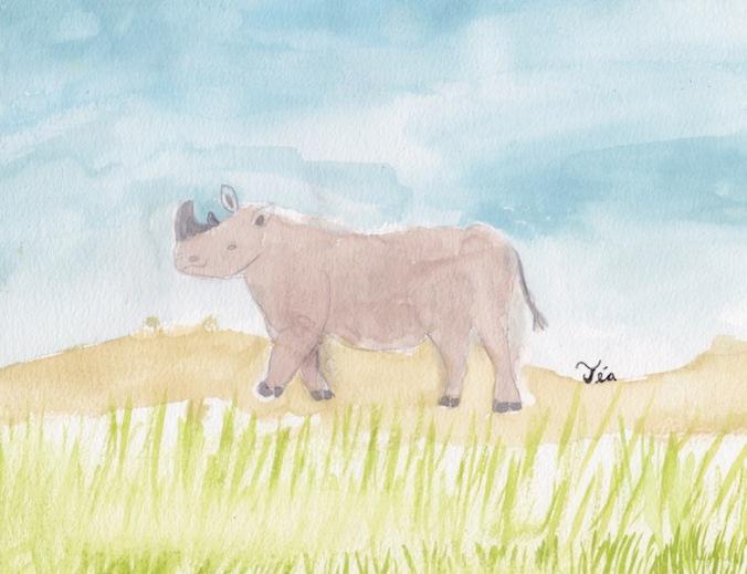 ES rhino 72